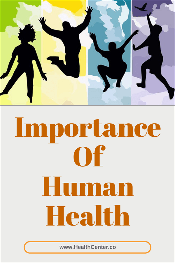 Importance Of Human Health: Your Mind, Body, Diet, Exercise, And Habits