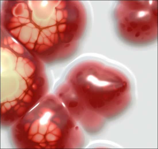 chemo brain symptoms research