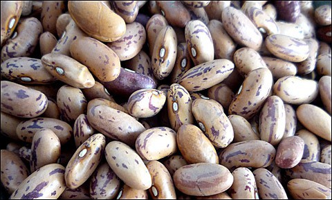 Dried pinto beans.