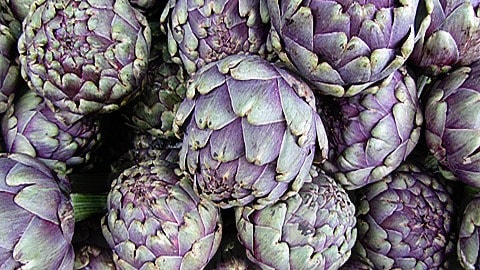 Artichoke close up.