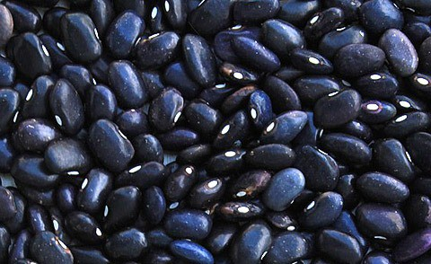 Black beans close up.