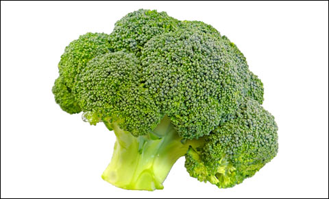 Fresh broccoli.