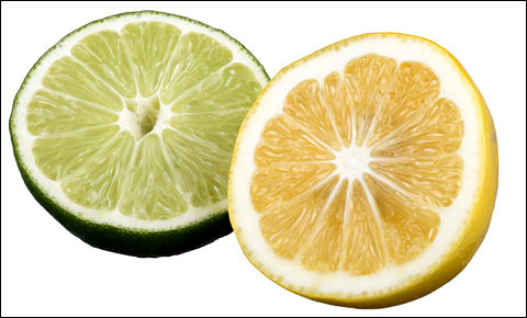 Lemon and lime on white background.