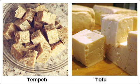 Tempeh and tofu.