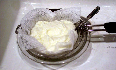 Homemade yogurt.
